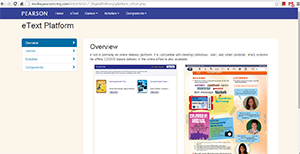 Screenshot of the digital delivery website page